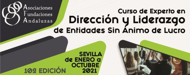 Curso de Experto en Dirección de Entidades sin Ánimo de Lucro de la Asociación de Fundaciones Andaluzas